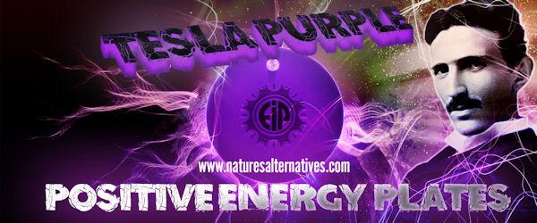 Tesla Positive Energy Purple Plates