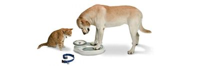 Pet Weight Control Products at Nature's Alternatives