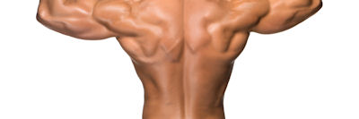 Muscle Building Dietary Supplements
