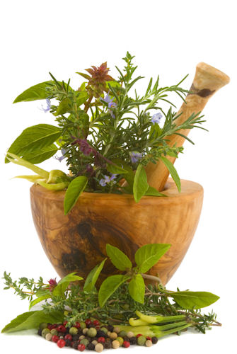 Herbs & Herbal Extract Nutritional Supplements