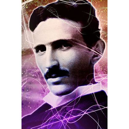 Tesla Positive Energy Purple Plates at Nature's Alternatives