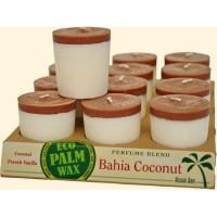 Aloha Bay Candle Votives Bahia Coconut White-Brown 12-pack