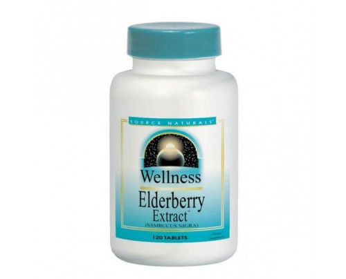 Source Naturals Wellness Elderberry Extract 500mg Tablets