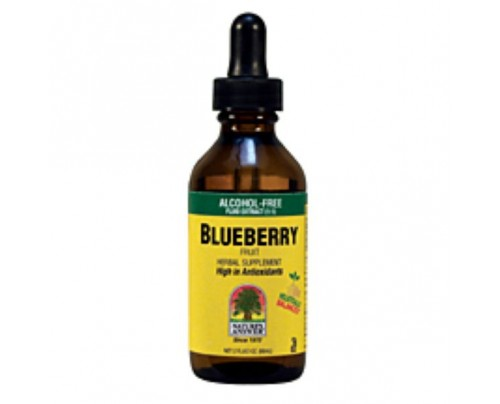 Nature's Answer Blueberry Fruit Alcohol-Free Extract 2oz.