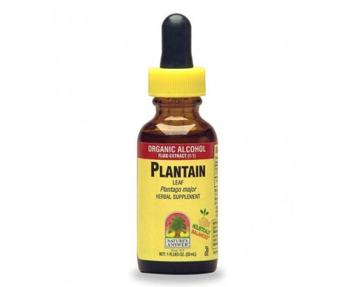 Nature's Answer Plantain Leaf Herbal Extract 1 fl. oz.