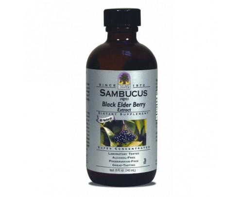 Nature's Answer Sambucus Original-Black Elder Berry Alcohol-Free Extract 8oz.