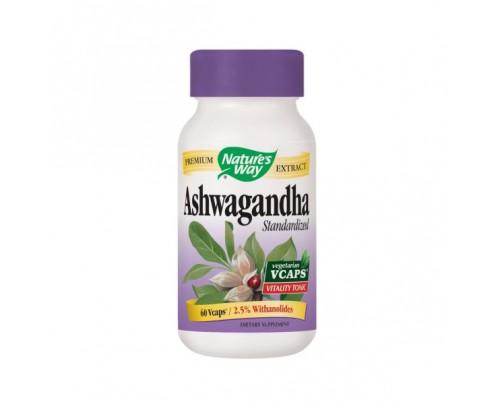 Nature's Way Ashwagandha Standardized Extract 500mg 60 Vegetarian Capsules