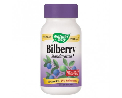 Nature's Way Bilberry Standardized Extract 80mg 90 Capsules