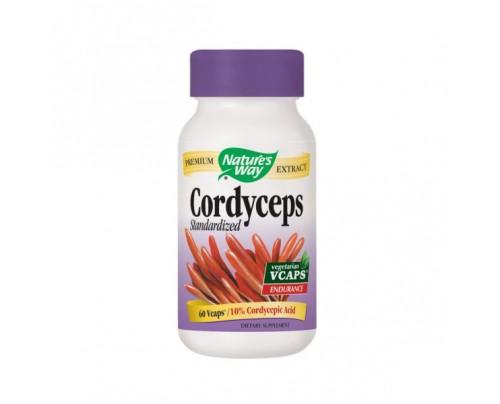 Nature's Way Cordyceps Standardized Extract 500 mg 60 Vegetarian Capsules