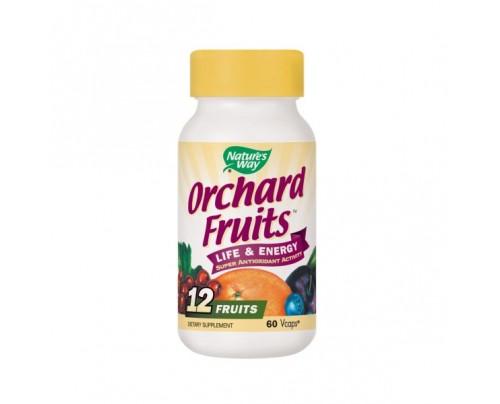 Nature's Way Orchard Fruits 450mg 60 Capsules