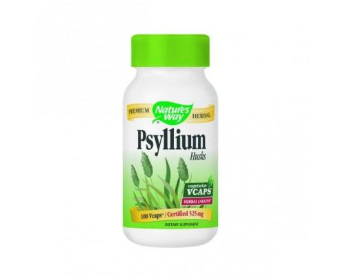Nature's Way Psyllium Husks 525mg 100 Capsules