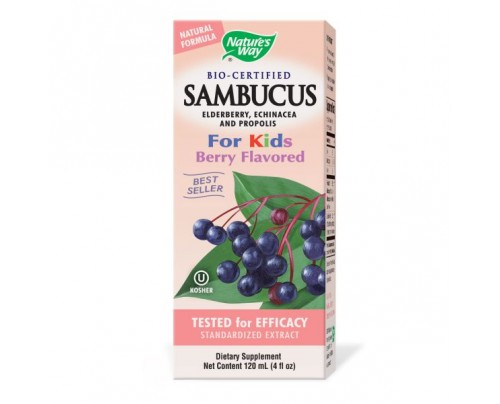 Nature's Way Sambucus Syrup For Kids 50mg 4oz.