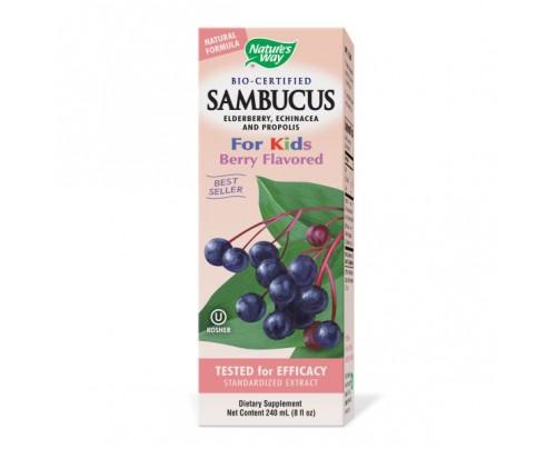 Nature's Way Sambucus Syrup for Kids 50mg 8oz.
