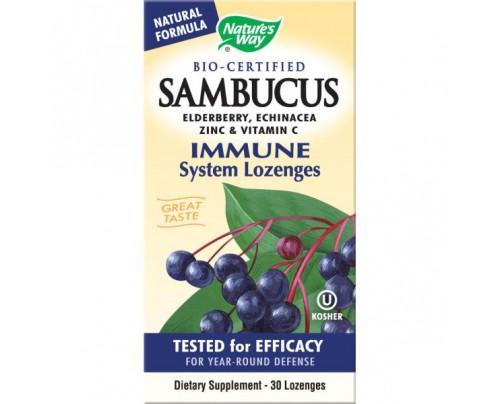 Nature's Way Sambucus Immune Lozenge 105mg 30 Lozenges