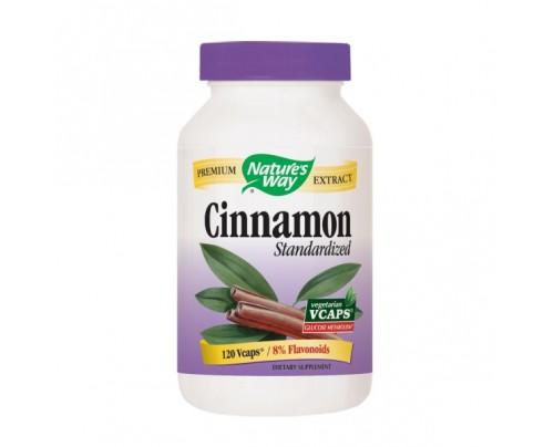 Nature's Way Cinnamon Standardized Extract 500mg 120 Vegetarian Capsules