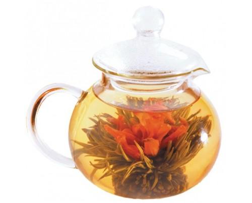 Numi Organic Tea Glass Teapot-Teahouse