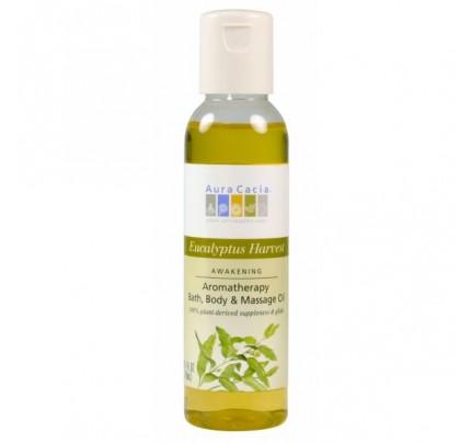 Eucalyptus Harvest Aromatherapy Body & Massage Oil 4oz.