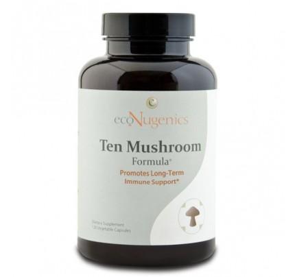 Ten Mushroom Formula MycoCeutics 120 Vegetable Capsules