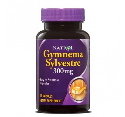 Gymnema Sylvestre 300mg 30 Capsules