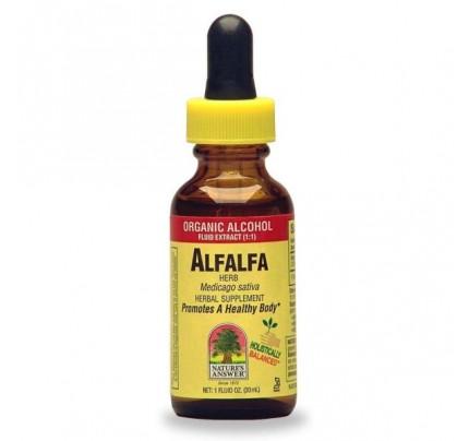 Alfalfa Herb Organic Extract 1oz.