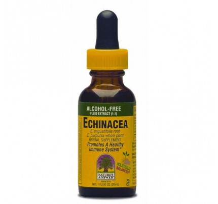 Echinacea Alcohol-Free Extract 1oz.