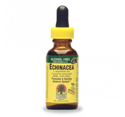 Echinacea Root with Grape Flavor Alcohol-Free 1oz.