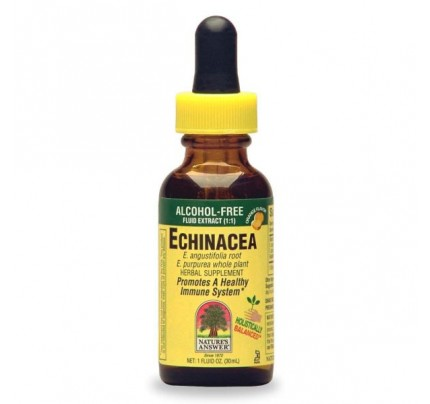Echinacea Root with Mandarin Orange Alcohol-Free 1oz.