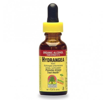 Hydrangea Root Extract 1oz.