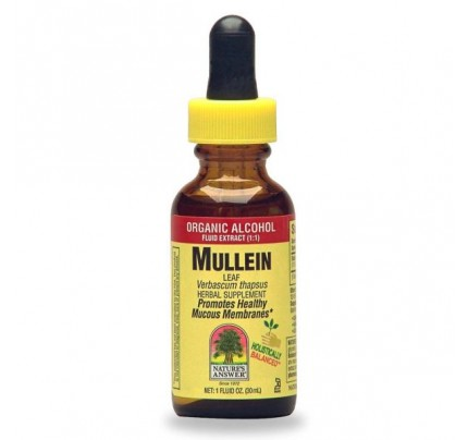 Mullein Leaves Herbal Extract 1 fl. oz.