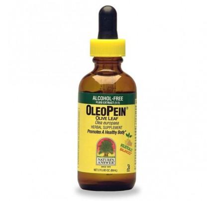 OleoPein Olive Leaf Alcohol-Free 2oz.