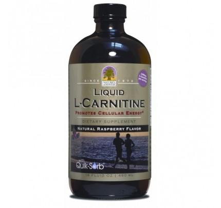 Liquid L-Carnitine 16oz.