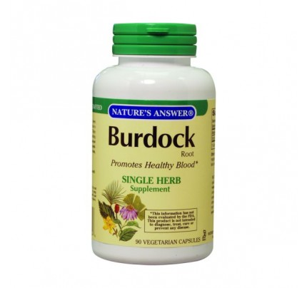 Burdock Root 500 mg 90 Capsules