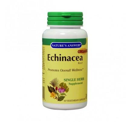 Echinacea Root 60 Vegetarian Capsules