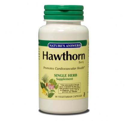 Hawthorn Berry 500mg 90 Capsules