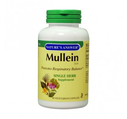 Mullein Leaf 500mg 90 Capsules