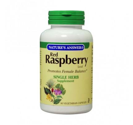 Red Raspberry Leaf 475mg 90 Capsules