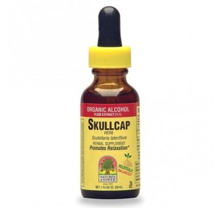 Skullcap Herb Extract 1oz.