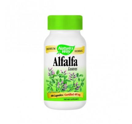Alfalfa Leaves 406mg 100 Capsules