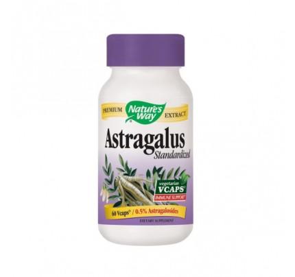 Astragalus Root 470mg 60 Vegetarian Capsules