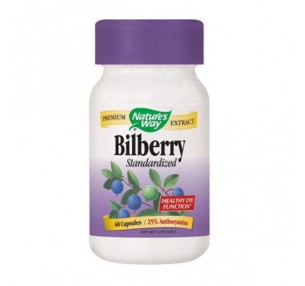 Bilberry Standardized Extract 80mg 60 Capsules