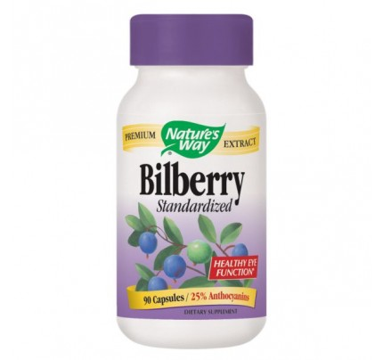 Bilberry Standardized Extract 80mg 90 Capsules