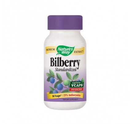Bilberry Standardized Extract 80mg 90 Vegetarian Capsules
