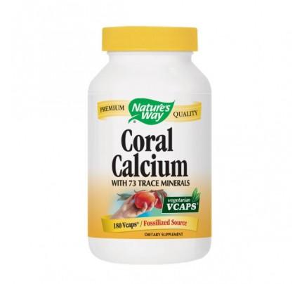 Coral Calcium 200mg 180 Vegetarian Capsules