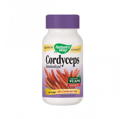 Cordyceps Standardized Extract 500 mg 60 Vegetarian Capsules