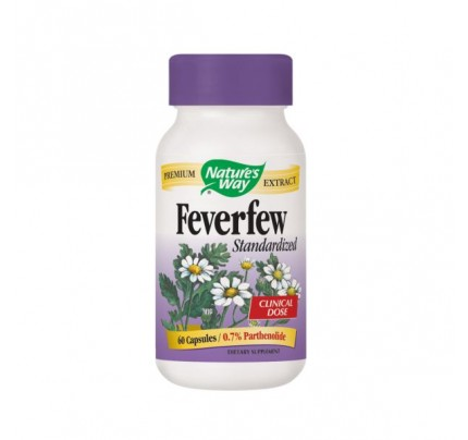 Feverfew Standardized Extract 290 mg 60 Capsules