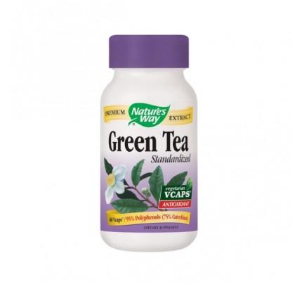 Green Tea Standardized Extract 450mg 60 Vegetarian Capsules