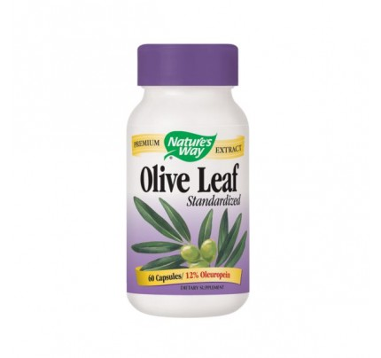 Olive Leaf Standardized Extract 430mg 60 Capsules