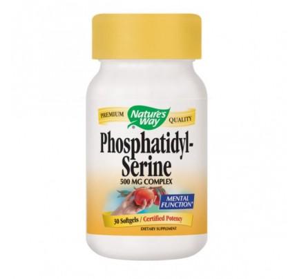 Phosphatidylserine 500mg 30 Capsules