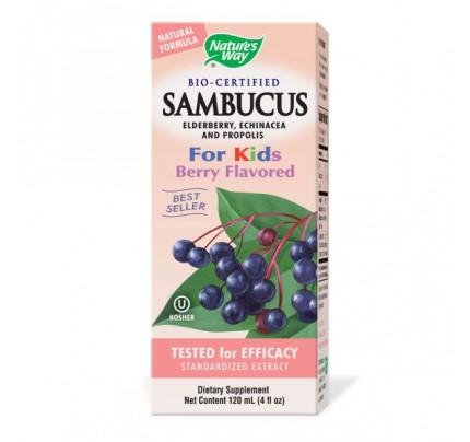 Sambucus Syrup For Kids 50mg 4oz.