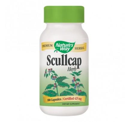 Scullcap Herb (stem, leaf, fruit) 425mg 100 Capsules